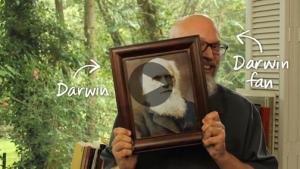 Darwin-Fan-SM03